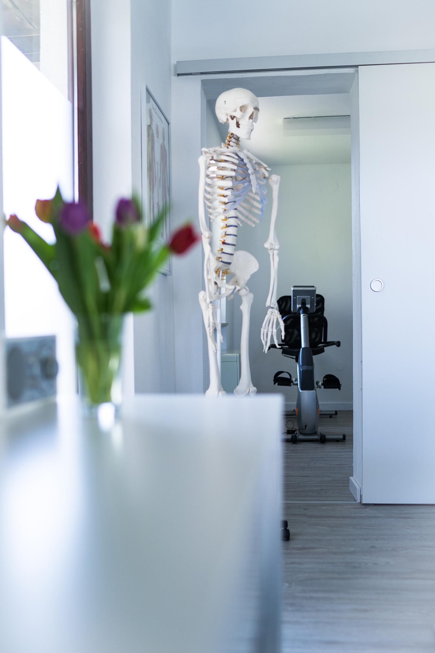 physiotherapie barbara klinger in perwang am see physiotherapie klinger. Black Bedroom Furniture Sets. Home Design Ideas